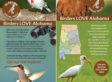 f2-birding-rackcard